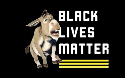 BLM movement stalls in Florida, most Democrats refuse to admit support for defunding police