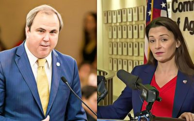 Nikki Fried could face scrutiny from Joint Legislative Audit Committee over hidden lobbying income