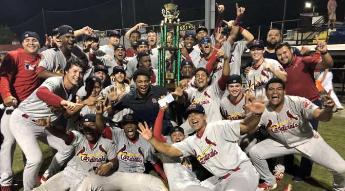The Cardinal Nation | First-hand news and commentary on the