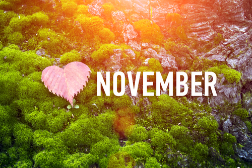 november is national caregiving month