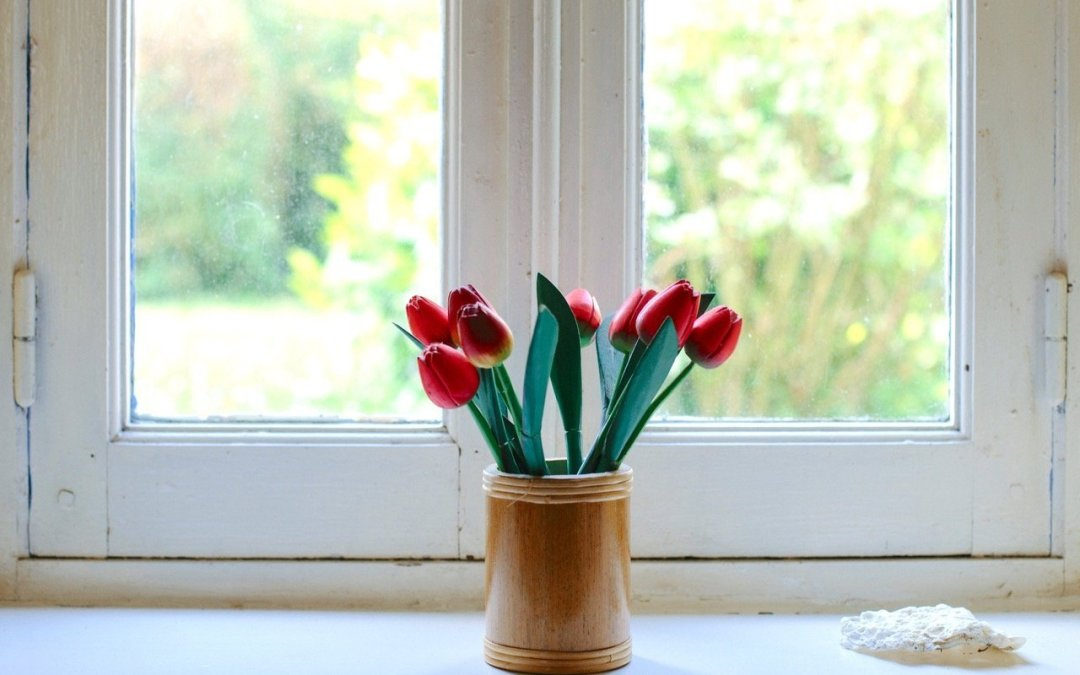 get well soon tulips