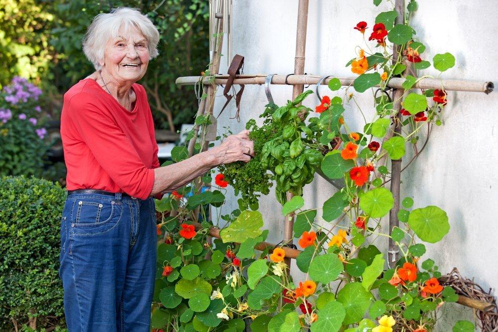 elderly woman gardening at a senior living community