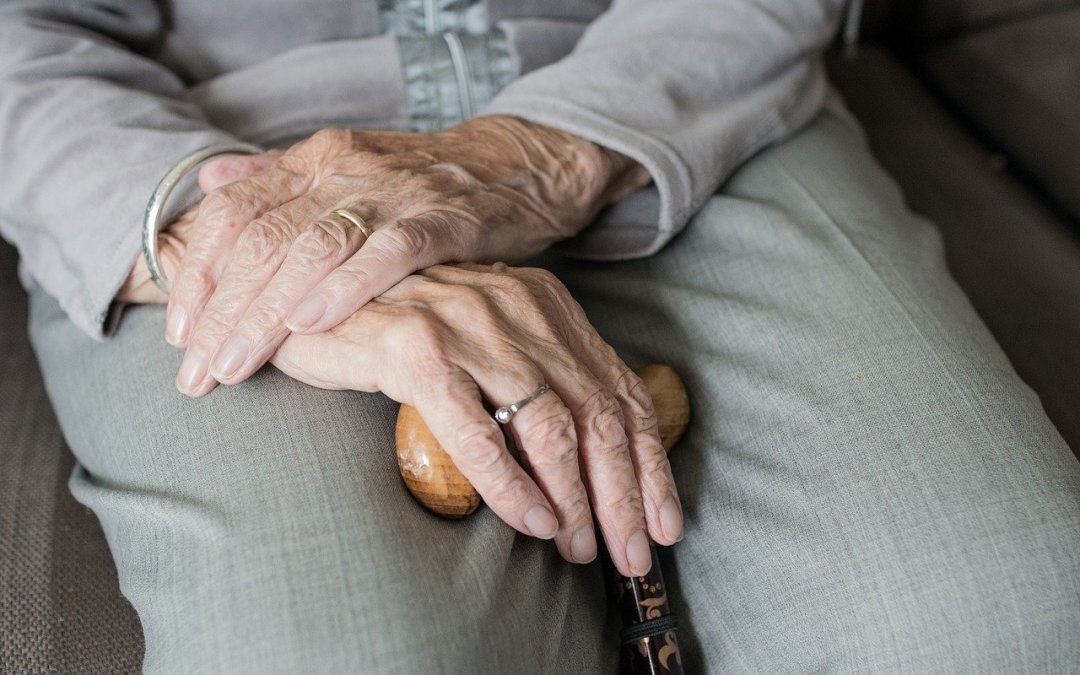 elderly woman's hands on lap