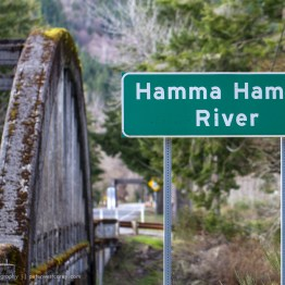 Hamma Hamma River, Washington, USA