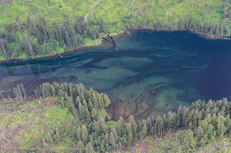 Peter-West-Carey-Alaska2015-0618-0245