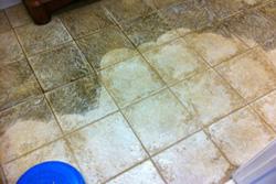 Carpet-Doctor-tile-grout
