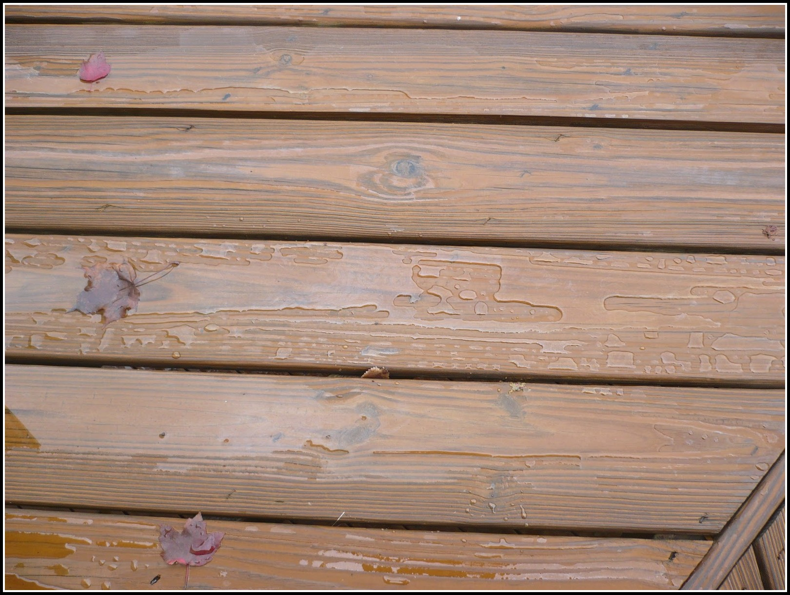 Deck Cleaning And Staining Louisville Ky