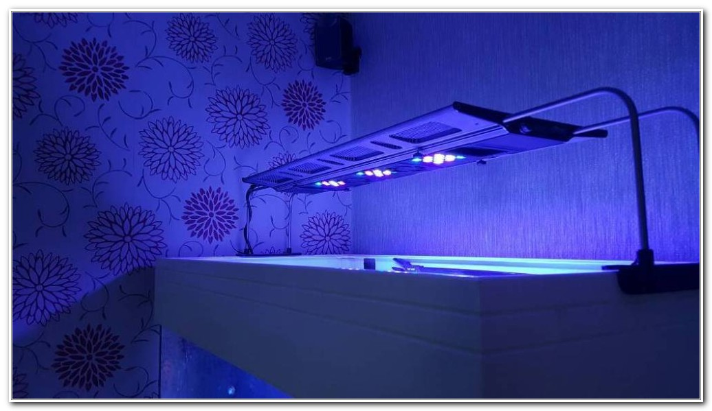 Amitex Led Deck Lighting Kit