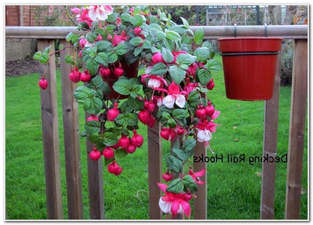Deck Rail Flower Boxes