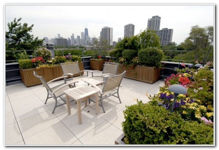 Roof Deck Garden Design Ideas