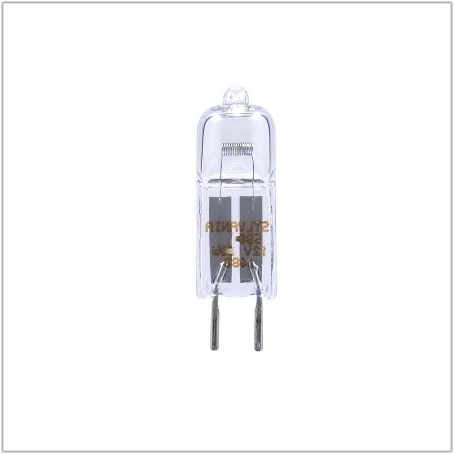Halogen Light Bulbs Desk Lamp