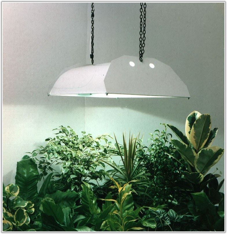 Indoor Grow Lamps For Plants