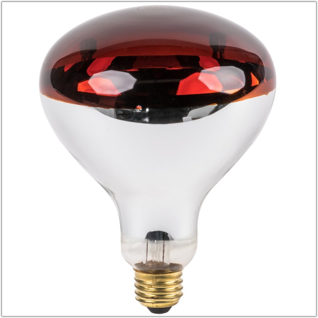Infrared Heat Lamp Bulb Red