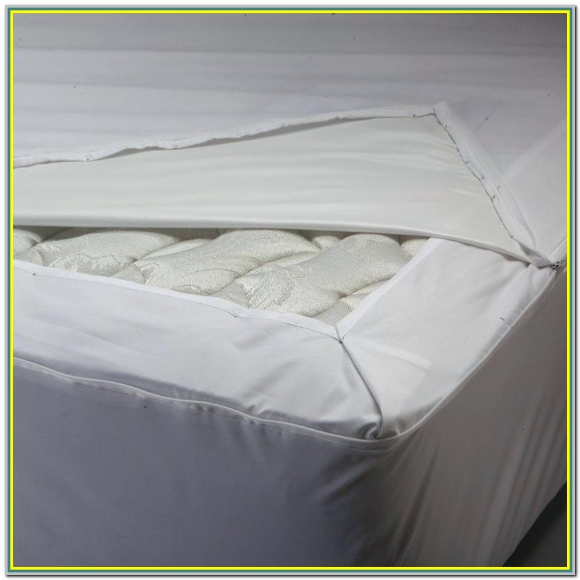 Bed Bath And Beyond Mattress Protector Bed Bugs