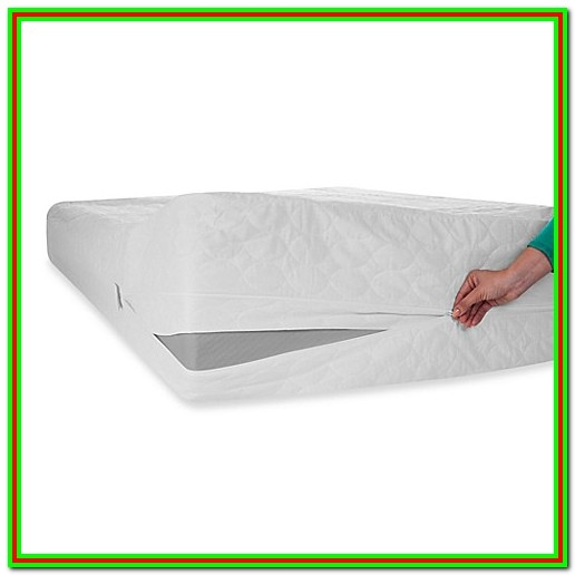 Best Mattress Protector Bed Bath And Beyond
