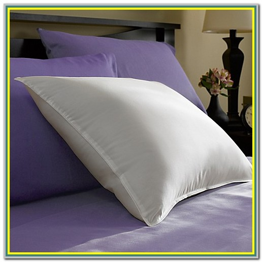 Down Feather Pillows Bed Bath Beyond