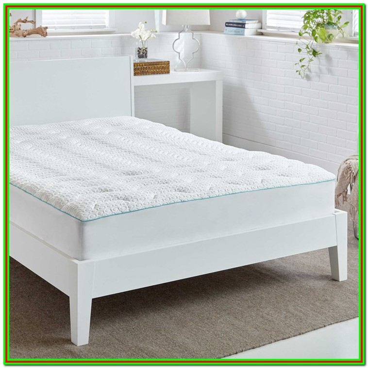 Sureguard Mattress Protector Bed Bath And Beyond