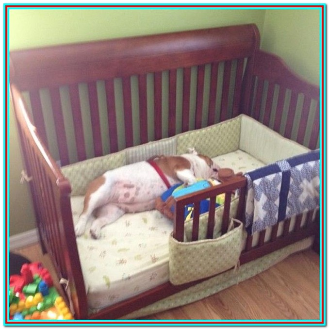 Baby Cribs Turn Into Beds
