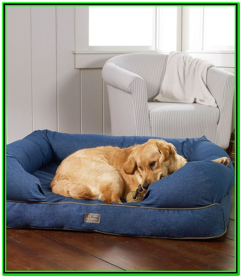 Ll Bean Dog Bed Cover