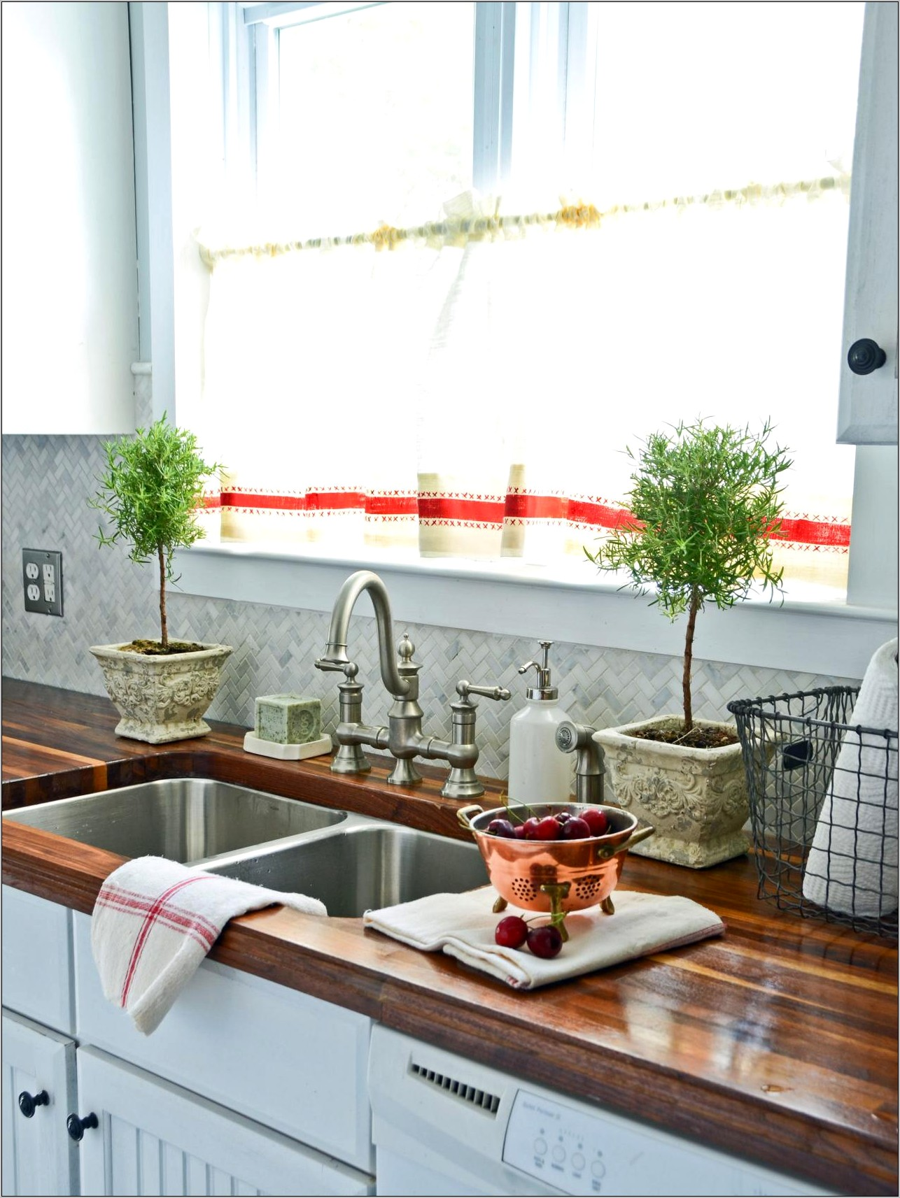 Elegant Kitchen Countertop Decorating Ideas With Plants