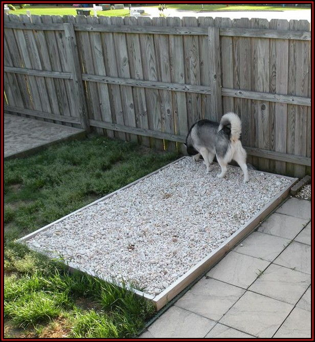 Dog Potty Area For Patio