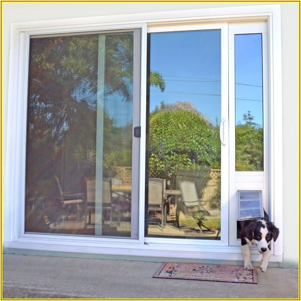 Sliding Patio Dog Door