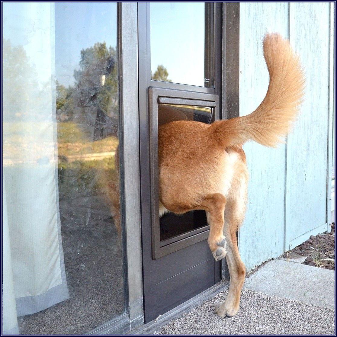Ideal Fast Fit Patio Pet Door Shorty