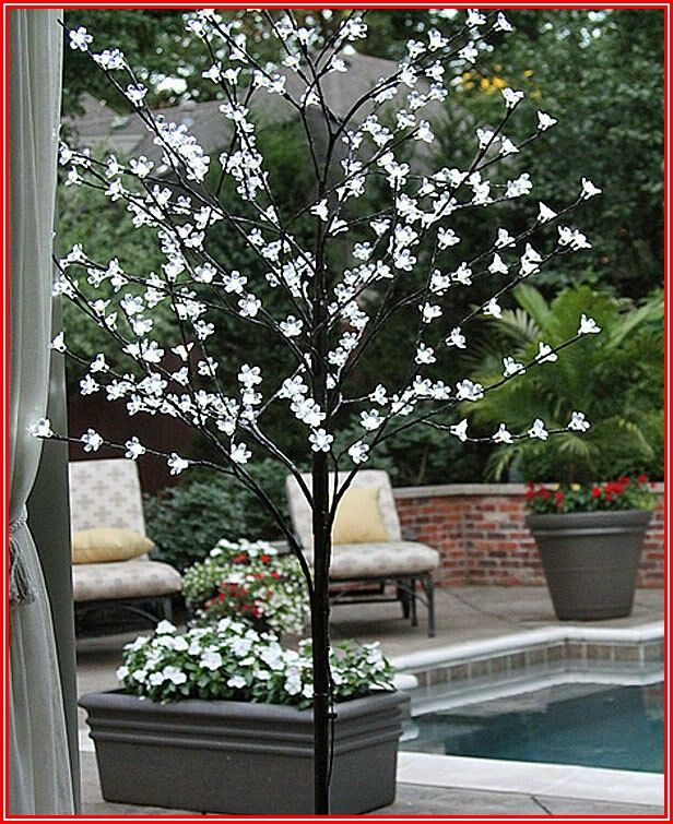 Outdoor Lighted Patio Trees