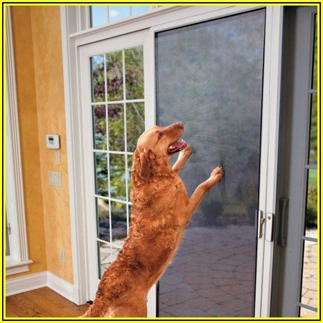 Patio Door Screens For Pets