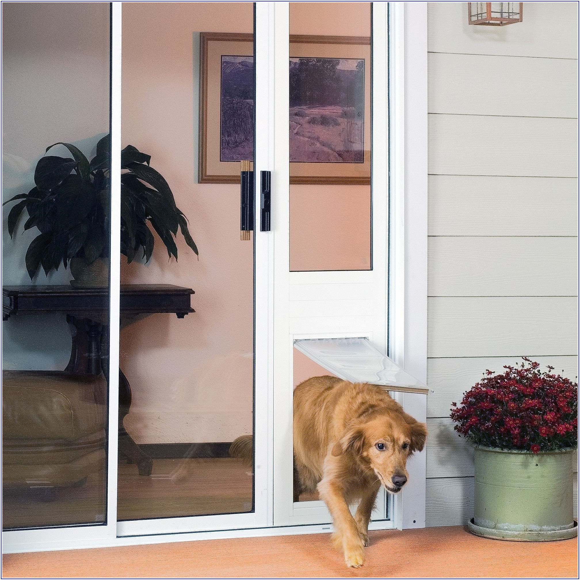 Patio Panel Sliding Glass Pet Door