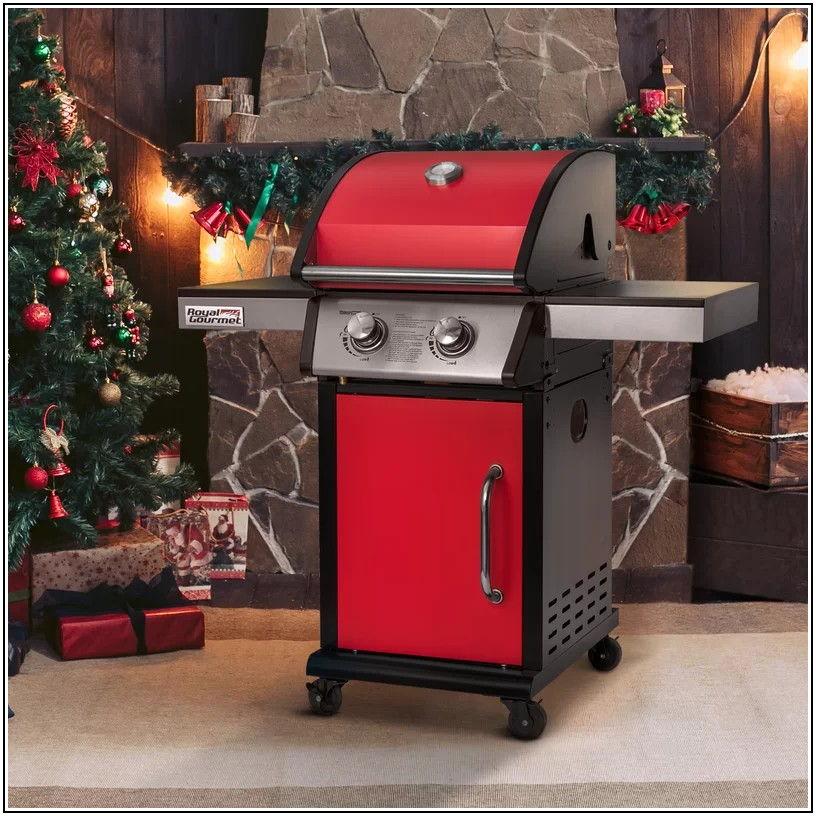 2 Burner Patio Propane Gas Grill