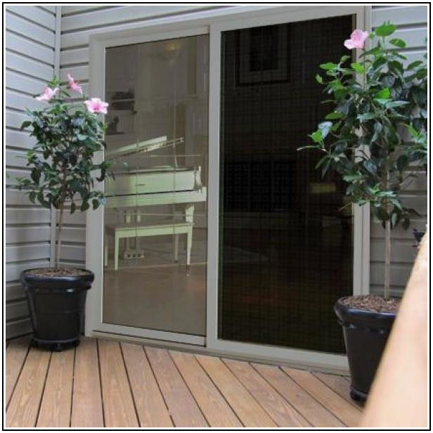 30 Patio Screen Door