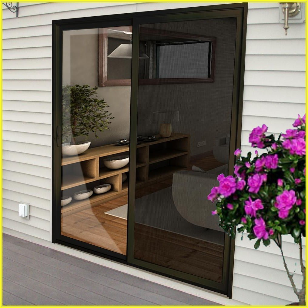Bronze Patio Screen Door