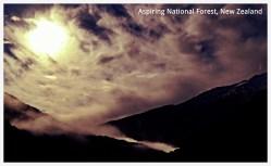 Aspiring National Forest