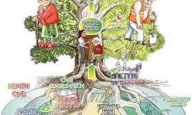 More CDHB pictorial presentations- the Canterbury Tree