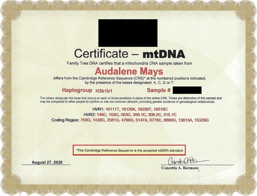 AUDALENE FTDNA CERTIFICATE RED BOX AND BLOCK TRADEMARK