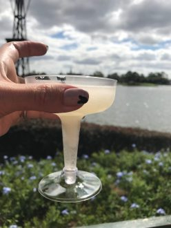 Epcot Food and Wine New Zealand Frozen Wine Cocktail