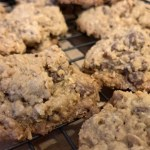 Casual Snackery – Oatmeal Chocolate Chip Cookies