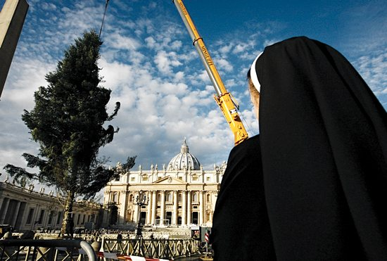 VATICAN CHRISTMAS TREE A nun watches as workers position the Christmas tree in St. Peter's Square at the Vatican Dec. 4. The tree is an 82-foot white fir from the Calabria region in southern Italy. CNS/Paul Haring