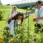 "'Laudato Si"" at one year: Catholics inspired to act on climate change"
