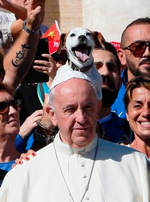 A dog sticks out his tongue as Pope Francis poses with members of an agility dog club during his general audience in St. Peter's Square at the Vatican Oct. 5. CNS photo/Paul Haring