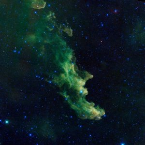 An undated handout photo released by NASA Nov. 1, 2013, shows the Witch Head nebula, named after its resemblance to the profile of a wicked witch.