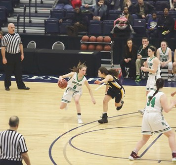 Ludden No. 5 Danielle Rauch 1 - Ludden, Grimes girls to face off in basketball final
