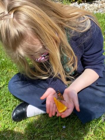 Emery Townsend - Slowly emerging marvel: butterflies at  St. Margaret's School