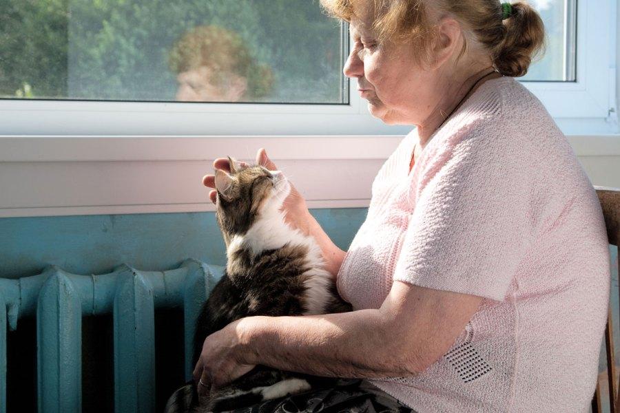 manfaat kucing bagi manula