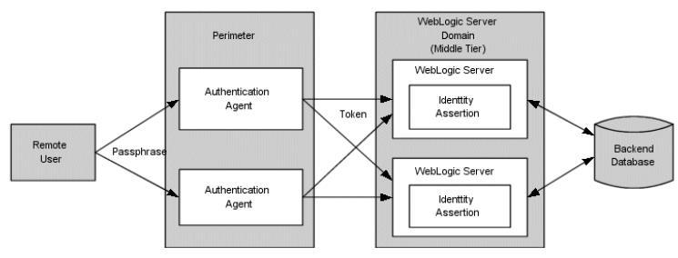 IT-Security (Part 5): WebLogic Server, perimeter Authentication and