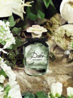 Dolce-creative-pack-shot_po