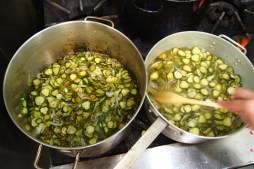 Cooking the cukes, converting them into pickles.
