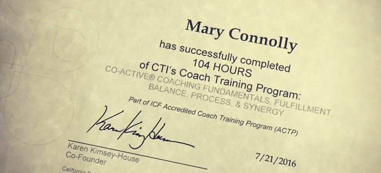 The Story of the Cause Coach (or what I do, Part 2)