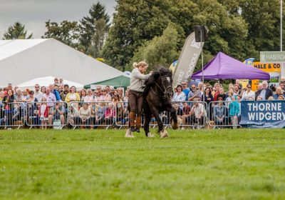 Herefordshire Country Fair - WW1 Horses and Heroes - Trick Riding - The lad can vault